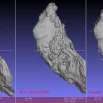 Scan 3D Huitres