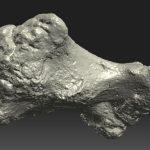 Scan 3D - Os dinosaure (1)